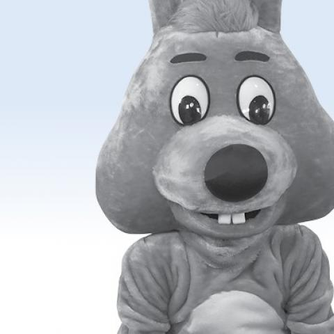 <p>Knuffelkonijn</p>